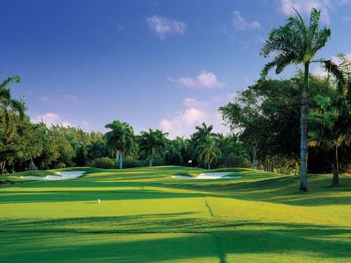 Activity Golf Hole07
